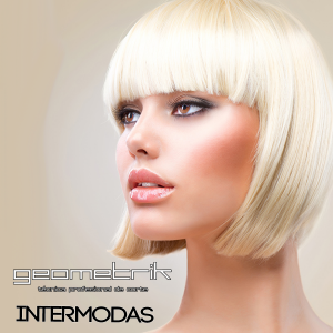 Geometrik intermodas